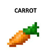 carrot 3inby225in