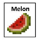 melon 2inby175in