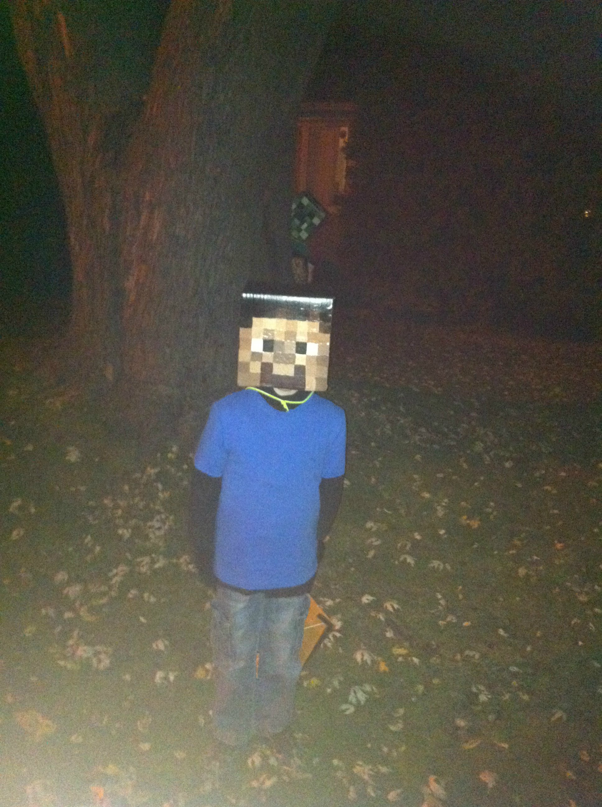 How to make minecraft steve and creeper heads - Minecraft creeper and steve ...